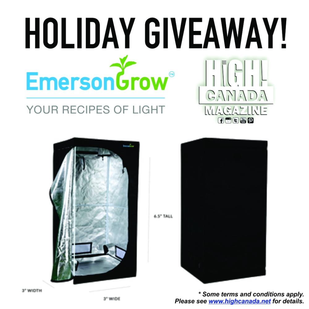 emerson box 1