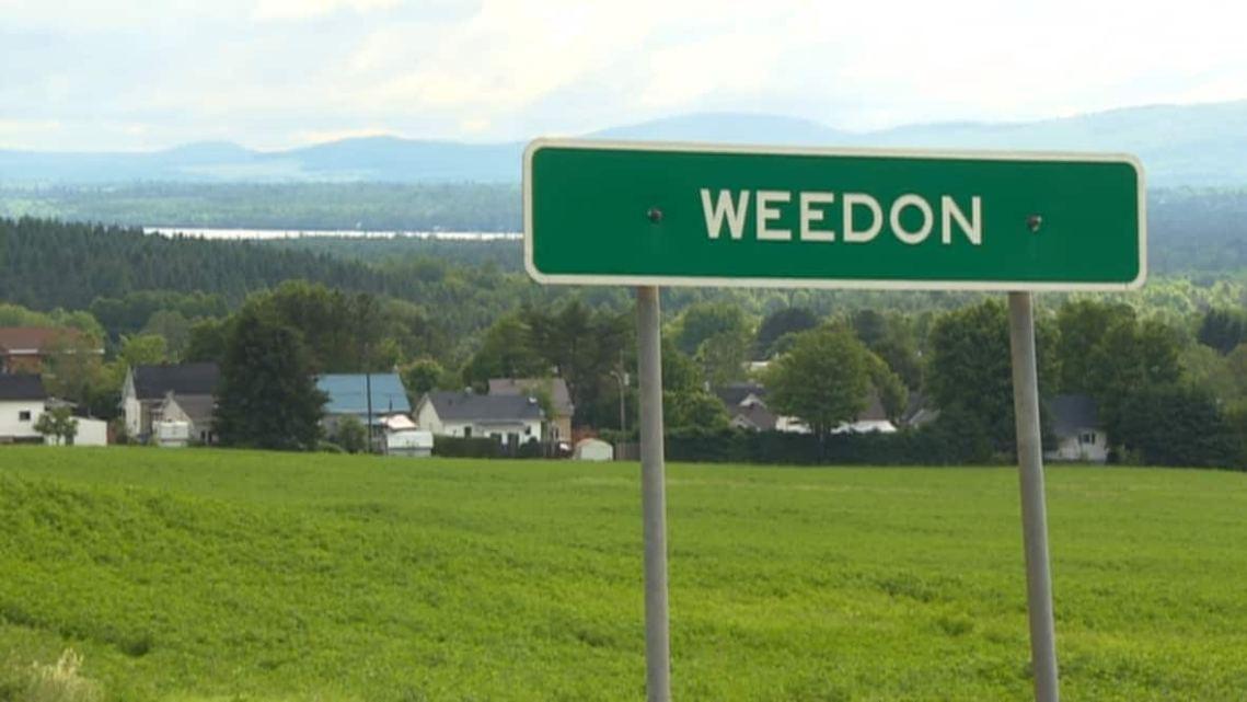 weedon-cannabis